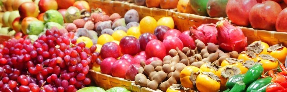 Un étalage de fruits et de légumes de saison